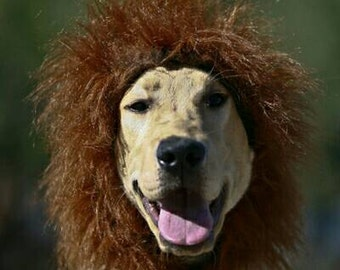 Lion Mane  available in Dark Brown, Black  Handmade