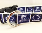 Dog Collar, Penn State, 1 inch wide, adjustable, quick release, metal buckle, chain, martingale, hybrid, nylon