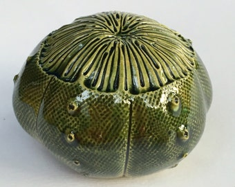 One Green Ceramic Sea Urchin Pod Wall 3