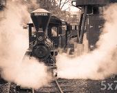 Hersheypark Dry Gulch Railroad Print