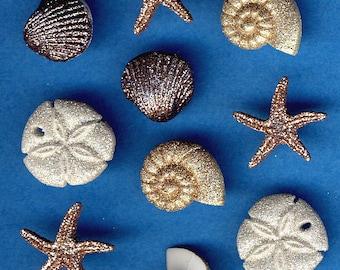 SEASHELLS at the SEASHORE - Glitter Sea Beach Novelty Dress It Up Craft Buttons