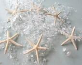 Starfish Garland Beach Decor, Beach Wedding Decor, Nautical Decor Beach Garland, Beach Christmas Garland, Beach Home Decor, CLEAR 5FT #BSFGC