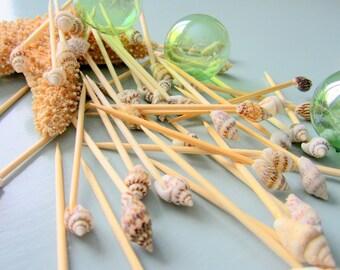 Beach Decor Seashell Toothpicks - Nautical Decor Appetizer Tooth Picks w Shells, 100pc
