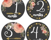 FREE GIFT, Baby Girl Monthly Stickers, Baby Month Stickers,Baby Milestone Stickers Tribal Arrows Gold Glitter Watercolor Floral Bodysuit