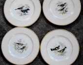 Vintage Antique Lenox China Plates 6 Hand Painted WARBLERS 2020 R348A J Nosek 1920's-50's Extreamley RARE Collectable Set