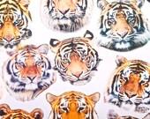 Tiger Print Spandex Fabric