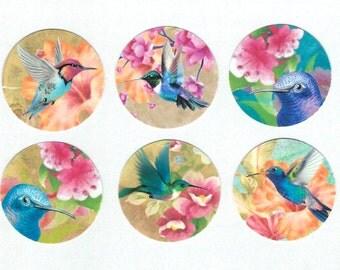 Stickers, Hummingbirds, Bird Lover, Flowers & Hummingbirds, Sticker Seals