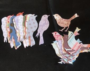 Assorted pattern paper - Bird Die cuts