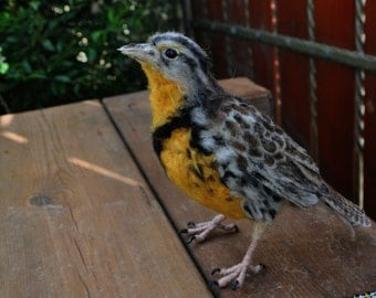 Needle Felted  Animals  Western Meadowlark