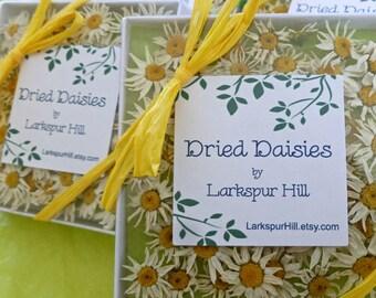 50 Small Dry Daisies, White Daisy, Craft supply, Resin Jewelry, Fairy, Wedding Confetti, Real Daisy, Table Decor, Decoration, Daisies