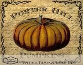 Vintage Pumpkin Print for Framing Printable Digital Download