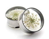 "White Queen Anne's Lace Embedded Flower Plugs gauges - 9/16"", 5/8"", 3/4"", 7/8"", 1"""