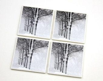 Winter Coaster Set, Holiday, White Christmas Decor, Snow Scene, Trees, 4X4 Tile, Set of 4