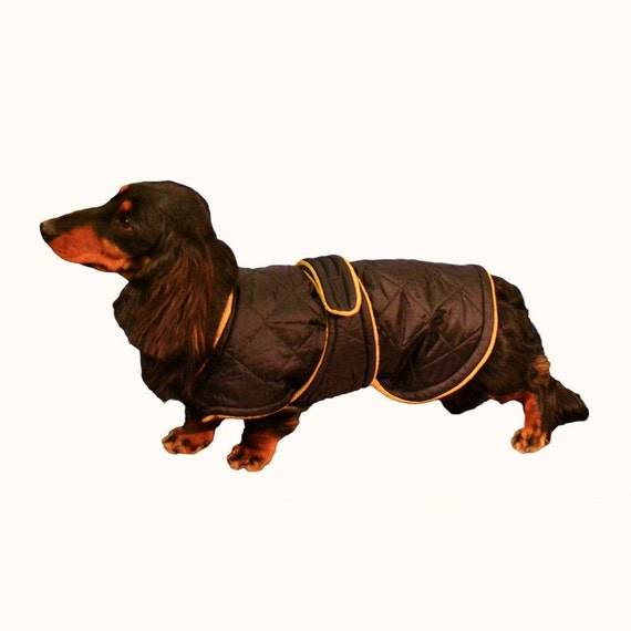 Miniature Dachshund Winter Coat Custom made with by madebyde