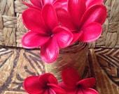 New Jelly Foam Plumeria hair picks