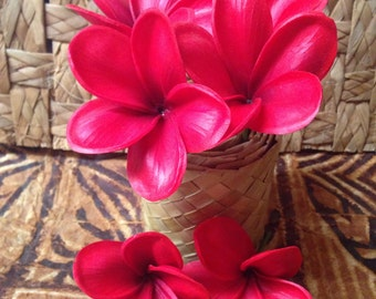 New Jelly Foam Plumeria hair picks