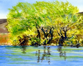 Willow trees watercolor, Yellow Green, Trees Landscape Art, Watercolor Painting, Original,  River reflections 11 x 16 inches