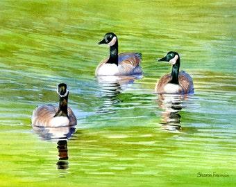 Canada Geese, Watercolor Art,  Watercolor Painting,  Original Paining, Painting Geese, Watercolor Geese, Geese Watercolor, Geese Painting