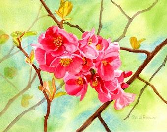 Pink Flowers, Watercolor Art, Flowering Quince, Floral Art ,Watercolor Painting, Original Watercolor, Floral Watercolor,  Pink  Flower Art