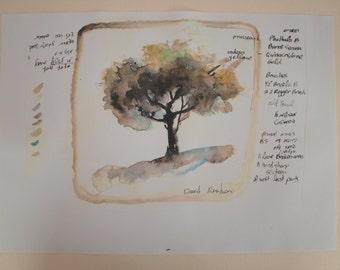 tree- watercolor practicing