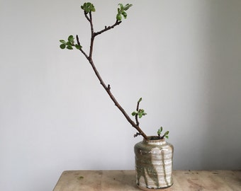simple stoneware vase - out of stock - allow 4-6 weeks for delivery. It's worth it.