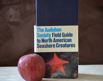 The Audubon Society Field Guide to North American Seashore Creatures Copyright 1981 Reference Guide ISBN 0394519930