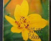 Flower Photo Block Wood Transfer Art Panel - Live Life In Full Bloom -  Wall, Shelf, Desk Decoration