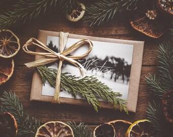 surprise print package 'Winter'