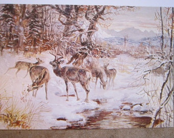 10 rare vintage CM Russell greeting - winter DEER at watering hole - Leanin' Tree - Charles M. Russell greeting cards - from Renner estate