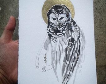 Owl Protector, Barred owl