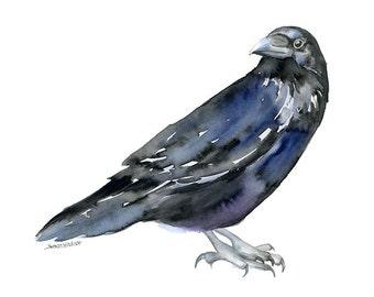 Raven Watercolor Painting - 14 x 11 - Giclee Print - Bird Art - Poe Art - Nevermore