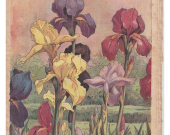 Vintage French gardening magazine with a vintage flower illustration as the front cover theme