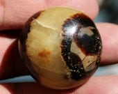 Septarian Mini Palm Stone Dragon Stone