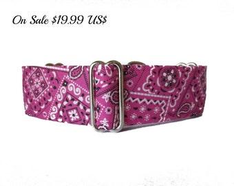 1.5 Inch Martingale Collar, Pink Martingale Collar, Pink Dog Collar, Bandana Dog Collar, Raspberry, Fuchsia, Martingale Dog Collar