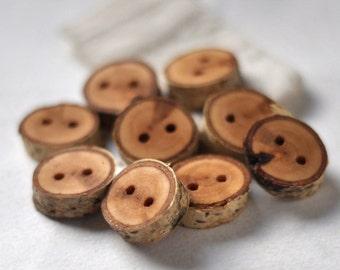 tree branch buttons • 9  birch wooden buttons  • birch wood button