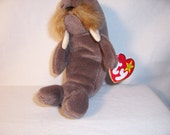 Ty Beanie Baby Jolly - Gifts,Collectibles,Toys,Beanie Babies