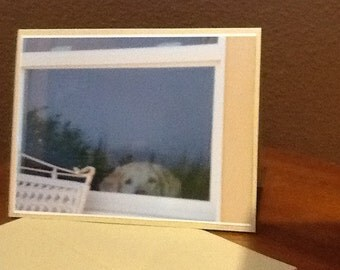 FAITHFUL FRIEND -  4 note cards with envelopes - Yellow Lab