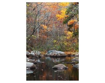 """Fine Art Color Nature Photography of Hawn State Park in Missouri - """"Pickle Creek in Late Autumn 3"""""""