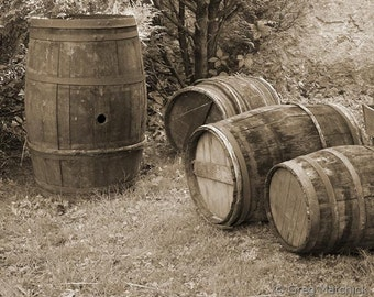 "Fine Art Sepia Photography of French Wine Barrels - ""Four Loire Wine Barrels"""
