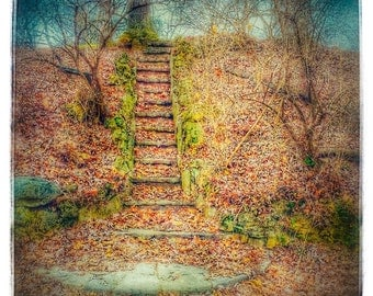 Surreal Digital Print of Stone Steps in a Woodland - Phone Edit