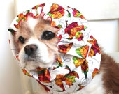 Fall Leaves Dog Snood, Stay-Put 3 Rows Elastic Thread, Long Ear Coverup, Cavalier King Charles or Cocker Snood