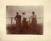 These Three COWGIRLS TILTING Their Heads With An ATTITUDE Photo Circa 1910