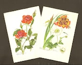 Pair of Floral Botanical Vintage Postcards Red Roses and Pfauenlilie and Japanese Anemone Unused and Suitable For Framing.