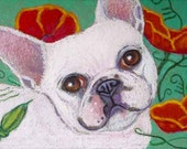 French Bulldog painting art dog bulldog ORIGINAL Oil Pastel Painting Dog poppies frenchie