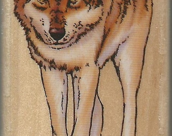 Wolf Stamp -- NEW -- Wood Mounted Rubber Stamp -- Rubber Stampede Brand -- (#1412)