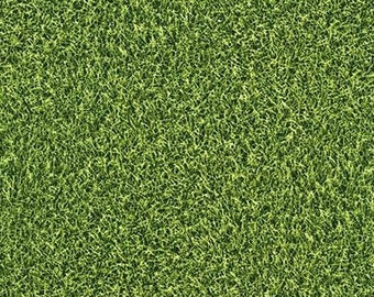 Sports Life - Grass - Robert Kaufman
