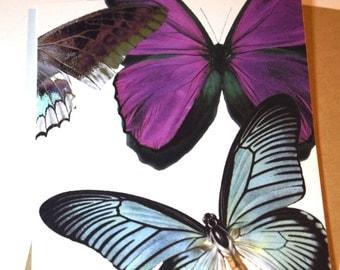 Original Butterfly Card, Handmade Card, Blank Card, Butterfly Card and Envelope, Queen Bee and Butterfly Card
