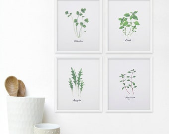 Herb Print Set Kitchen Art - Any FOUR 5x7 Watercolor Herbs / Kitchen Art Print, Botanical Decor