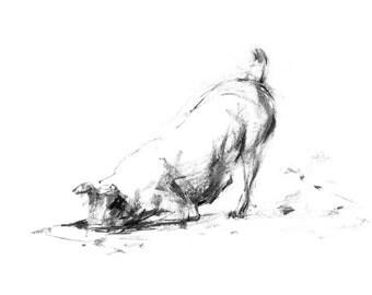 Digging Terrier - fine art dog print