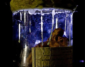 Thing in a Jar - Freeze Dried Two-Headed Faerie
